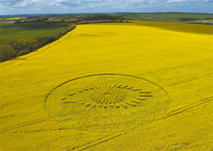 The Big Brother crop circle was made in a rapeseed field at Lockibgkiln Farm, Wantage, Oxfordshire, England. The one-hundred-meter-wide crop circle took six people a total of seven hours to construct.