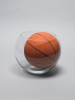 491_512goldfish-bowl--basketball.jpg