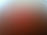 496_photo.jpg